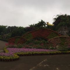 Jinniuling Park User Photo
