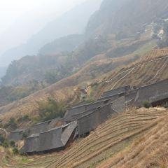 Jinkeng Rice Terraces User Photo