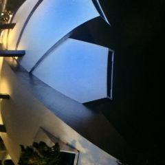 싱가포르 미술관 여행 사진