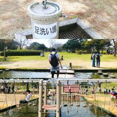 海中道海濱公園用戶圖片