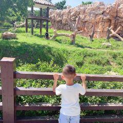 창춘동식물공원 여행 사진