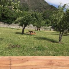 Estadio Regional Calvo y Bascunan User Photo