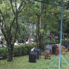 Tao Dan Park User Photo