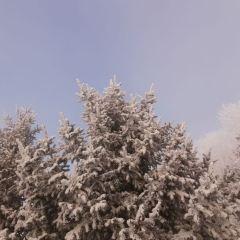 霧凇島用戶圖片