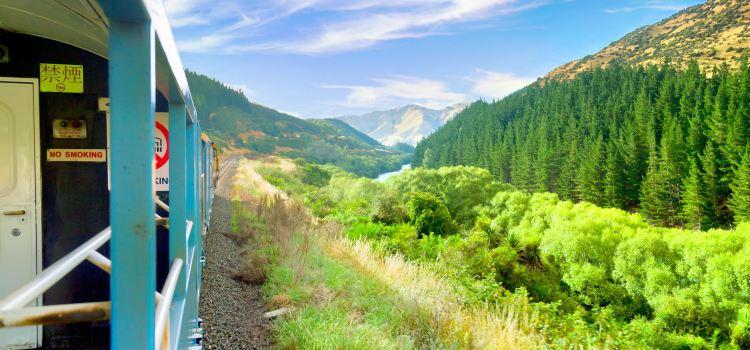 The Great Journeys of New Zealand TranzAlpine