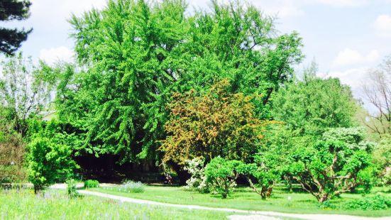 Botanischer Garten (Botanical Garden of the University of Vienna)