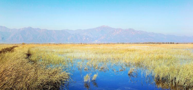 Beijing Wild Duck Lake National Wetland Park