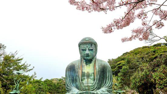 Kotokuin Great Buddha of Kamakura