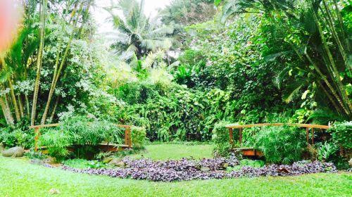 Maire Nui植物園