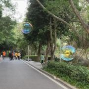 Shimen Forest Park User Photo