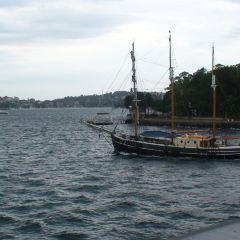 Sydney Habour Tall Ship Cruises User Photo