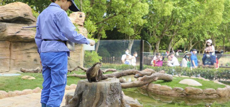 Shanghai Wild Animal Park3