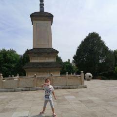 Qinglong Temple User Photo