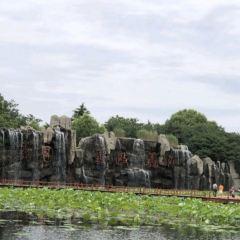 Weishan Wetland Park User Photo