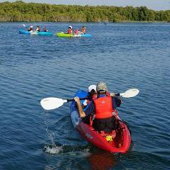 Eastern Mangrove Lagoon National Park用戶圖片