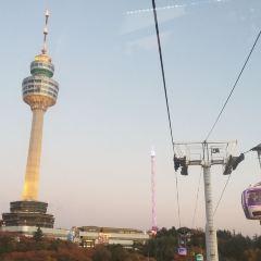대구83타워 여행 사진