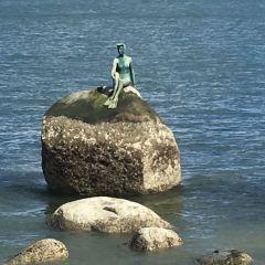 Girl In A Wetsuit用戶圖片