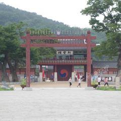 Suwon Hwaseong User Photo
