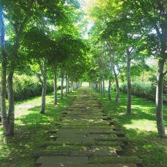 Nakasatsunai Art Village User Photo
