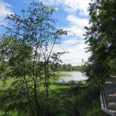 Inglewood Bird Sanctuary and Nature Centre User Photo