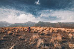 新疆,旅行達人挑戰賽