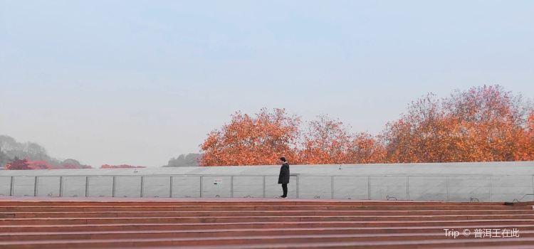 武漢大學萬林藝術博物館1