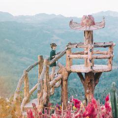 시라오 가든 여행 사진