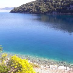 Dugi Otok User Photo