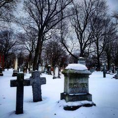St James Cemetery User Photo