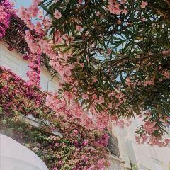 Island of Capri User Photo