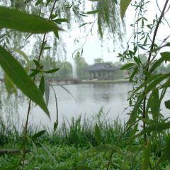 서동 공원 여행 사진