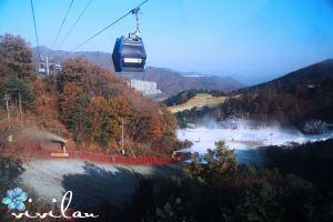 Pyeongchang-gun,Recommendations