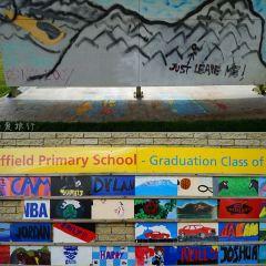 Sheffield User Photo