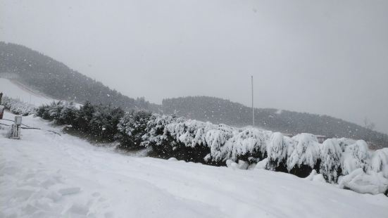 青州市駝山スキー場