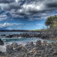 Ahihi Kinau Natural Area Reserve User Photo