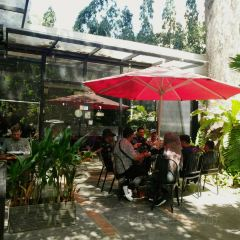 Museum Cafe & Boutique User Photo