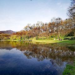 비파호 공원 여행 사진