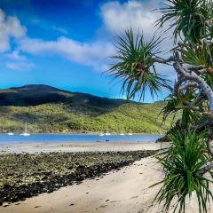 Hook Island User Photo