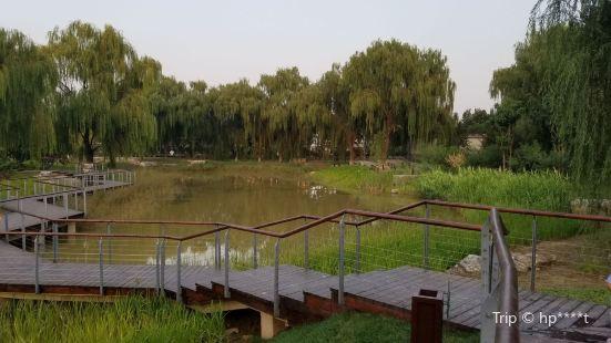 Shucun Country Park