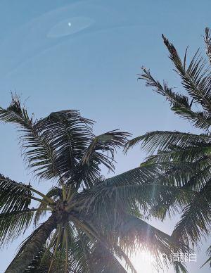 峇里島,推薦