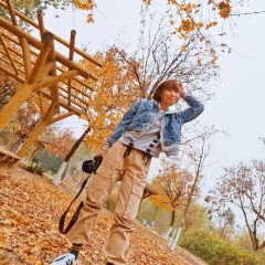 Changying Park User Photo