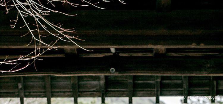 岡本和服體驗(衹園店)2