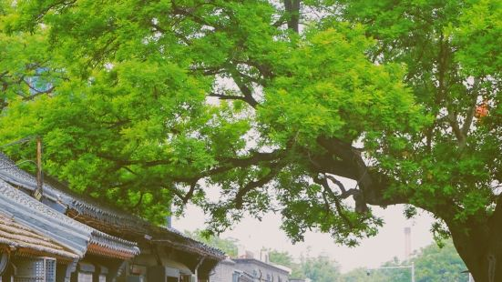 Qianliang Hutong
