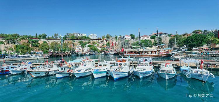 Roman Harbour1