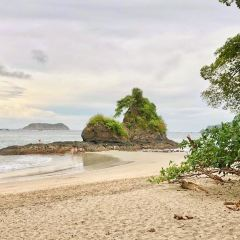 Manuel Antonio National Park User Photo