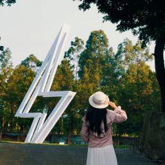 Pingshan Sculpture Art Creativity Park User Photo