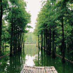 Shanghu Lake User Photo