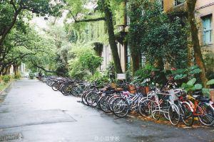 Taipei,springholiday
