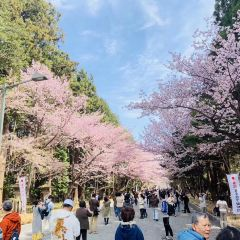 Matsumae Park User Photo
