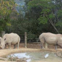 Hamilton Zoo User Photo